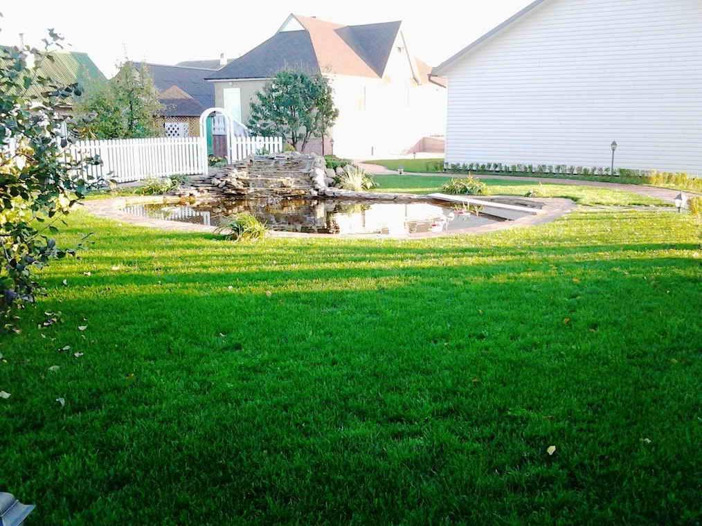 Докоративный пруд возле загородного домика